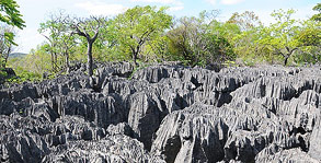 Tsingy formations, Ankarana  Photo by Aussierach on Travelpod