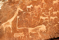 Prehistoric rock carvings