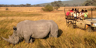 Getting up close with a rhino at Entabeni Conservancy Photo by Martin Weinberg