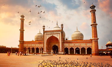 Splendors of India tour, $600 off