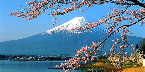 Japan Panorama