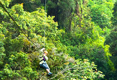 Riding a zip line through the canopy