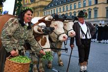 Festival in Munich