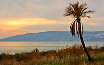 View over Sea of Galilee from Capernaum