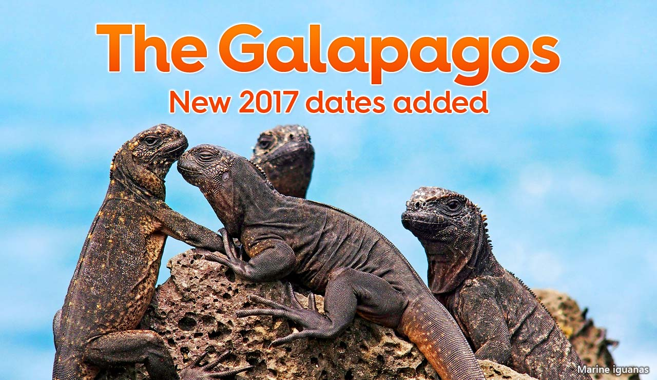The Galapagos: new 2017 dates added