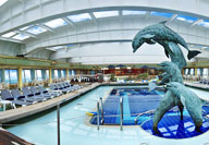 Veendam swimming pool