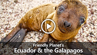Video: Friendly Planet's Ecuador & the Galapagos